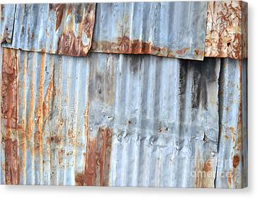 Zinc Wall Canvas Print by Antoni Halim