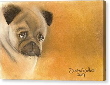 Zooey The Pug Canvas Print by Dindin Coscolluela