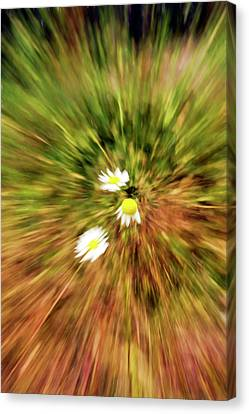Zooming In Or Zooming Out Canvas Print by James Steele
