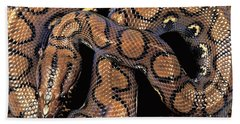 Brazilian Rainbow Boa Hand Towel by Art Wolfe