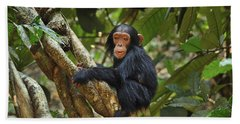 Chimpanzee Baby On Liana Gombe Stream Hand Towel by Thomas Marent