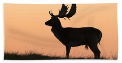 Fallow Deer Buck At Sunset Denmark Hand Towel by Duncan Usher