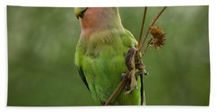 Lovely Little Lovebird  Hand Towel by Saija  Lehtonen