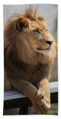 Majestic Lion Hand Towel by Sharon Foster
