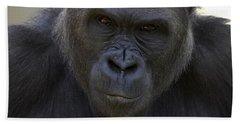 Western Lowland Gorilla Portrait Hand Towel by San Diego Zoo