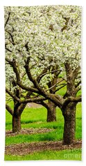 Apple Blossoms Hand Towel by Joe Mamer