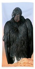 California Condor Hand Towel by Art Wolfe