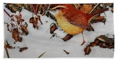 Carolina Wren Hand Towel by Ken Everett