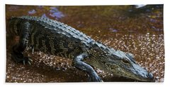 American Alligator Hand Towel by Mark Newman