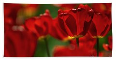Red And Yellow Tulips Hand Towel by Nailia Schwarz