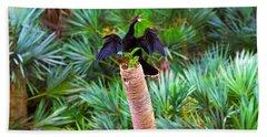 Anhinga Anhinga Anhinga On A Tree Hand Towel by Panoramic Images