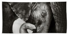 Baby Elephant Seeking Comfort Hand Towel by Johan Swanepoel
