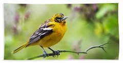 Baltimore Oriole II Hand Towel by Christina Rollo
