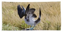 Blue-footed Courtship Behavior Hand Towel by William H. Mullins