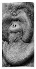 Bornean Orangutan IIi Hand Towel by Lourry Legarde