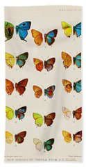 Butterfly Plate Hand Towel by Pati Photography
