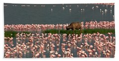 Cape Buffalo And Lesser Flamingos Hand Towel by Panoramic Images