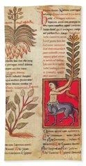 Centaur, Legendary Creatures Hand Towel by Photo Researchers