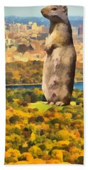 Central Park Squirrel Hand Towel by Dan Sproul