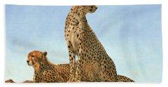 Cheetahs Hand Towel by David Stribbling