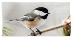 Chickadee Hand Towel by Christina Rollo