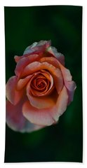 Close-up Of A Pink Rose, Beverly Hills Hand Towel by Panoramic Images