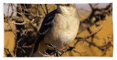 Common Mockingbird Hand Towel by Robert Frederick