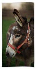 Donkey Hand Towel by Shane Holsclaw