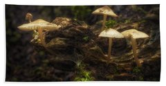 Enchanted Forest Hand Towel by Scott Norris