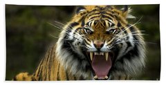 Eyes Of The Tiger Hand Towel by Mike  Dawson