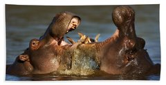 Fighting Hippo's Hand Towel by Johan Swanepoel
