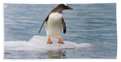 Gentoo Penguin On Ice Floe Antarctica Hand Towel by Yva Momatiuk John Eastcott