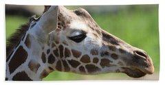 Giraffe Portrait Hand Towel by Dan Sproul