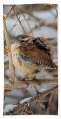 Grumpy Bird Hand Towel by Bill Wakeley