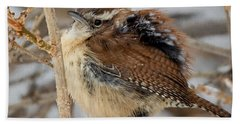 Grumpy Bird Square Hand Towel by Bill Wakeley