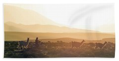 Herd Of Llamas Lama Glama In A Desert Hand Towel by Panoramic Images