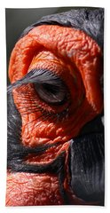 Hornbill Closeup Hand Towel by David Salter