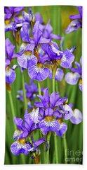 Irises Hand Towel by Elena Elisseeva