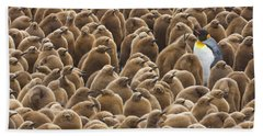 King Penguin In Creche  Hand Towel by Yva Momatiuk John Eastcott