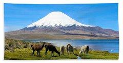 Lake Chungara Chilean Andes Hand Towel by Kurt Van Wagner