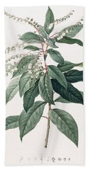 Lily Of The Valley Tree Hand Towel by Pierre Joseph Redoute