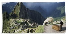 Machu Picchu And Llamas Hand Towel by James Brunker