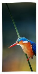 Malachite Kingfisher Hand Towel by Johan Swanepoel