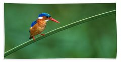 Malachite Kingfisher Tanzania Africa Hand Towel by Panoramic Images