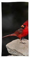 Male Cardinal Hand Towel by Gary Langley