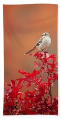 Mockingbird Autumn Hand Towel by Bill Wakeley