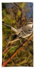 Northern Mockingbird Hand Towel by Chris Flees
