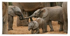 Pachyderm Pals Hand Towel by Bruce J Robinson