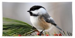 Pine Chickadee Hand Towel by Christina Rollo
