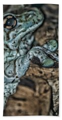 Poisonous Frog With Sticky Feet Hand Towel by Thomas Woolworth